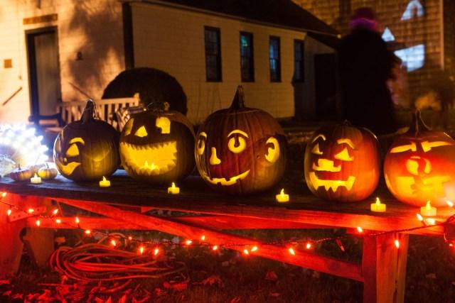 SHD_pumpkins_ss_13