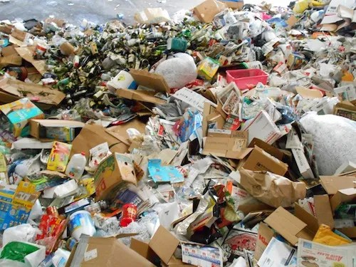 Paper, plastic and cardboard recyclables can now be tossed in one place. (Cyndi Murray photo)