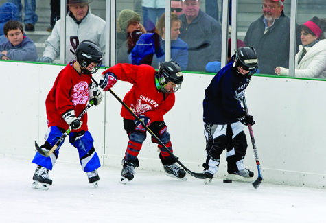 The Greenport Pirates Hockey Fest takes place Saturday, Feb. 12, from 11 a.m. to 6 p.m. at the Mitchell Park rink, with youth hockey games, skill competitions, curling and appearances by the New York Islanders' Ice Girls and mascot Sparky the Dragon. Opening ceremonies start at 1:50 p.m.