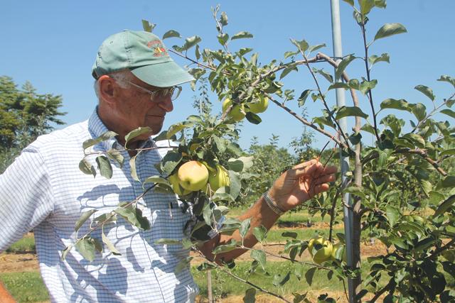 Wickham's Fruit Farm owner Tom Wickham was recently honored for implementing environmentally sustainable practices to preserve groundwater quality. (Credit: Nicole Smith)