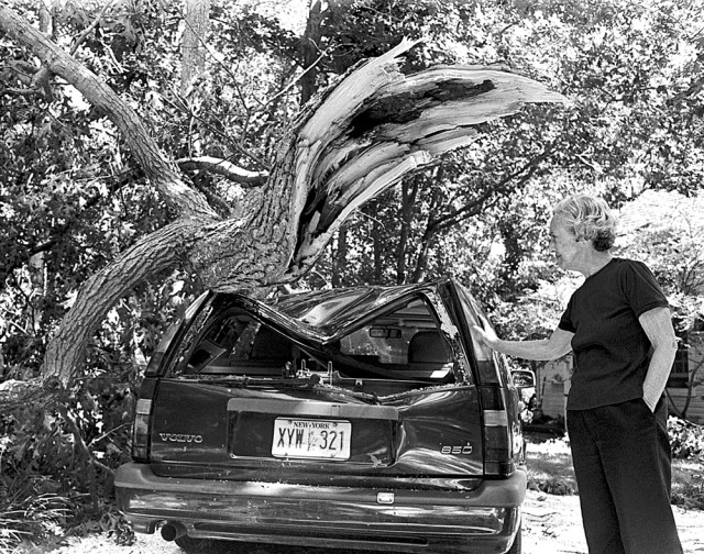 Marcia Brown beside an oak that fell atop her volvo on Nassau Point. (Judy Ahrens photo, file)
