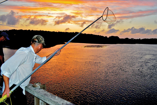 TIM KELLY PHOTO  |  A man searches West Creek in New Suffolk for blue-claw crabs just after sunset this past summer.