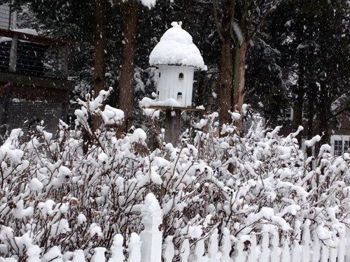 Nestled in — A bird house  in Laurel. (Catherine Irwin courtesy photo)