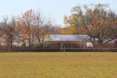 CARRIE MILLER PHOTO | Marratooka North Farm, an 18-acre farm off Main Road in Mattituck.