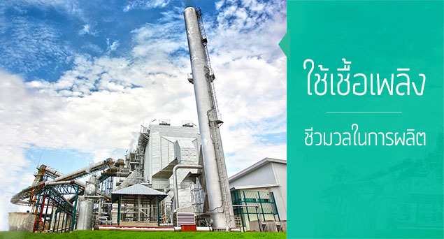 Northeastern Thai Sugar Mills Construct Biomass Power Plants in Bid to Nab Hybrid SPP Firm Licenses