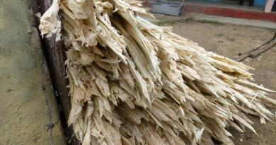 Thai Researcher Invents Methane from Bagasse Fermentation