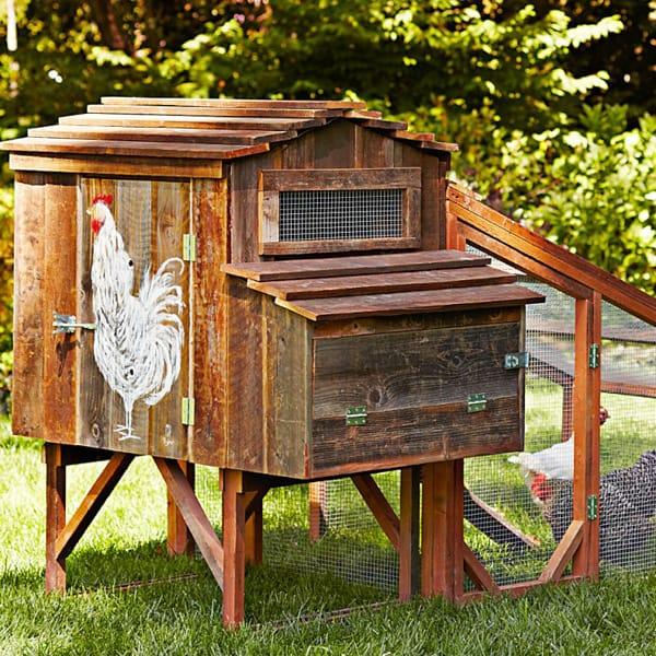 ChickenCoop_4