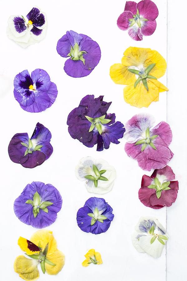 FloralShortbreadCookies_8
