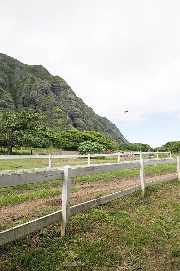 Hawaii_Oahu_18