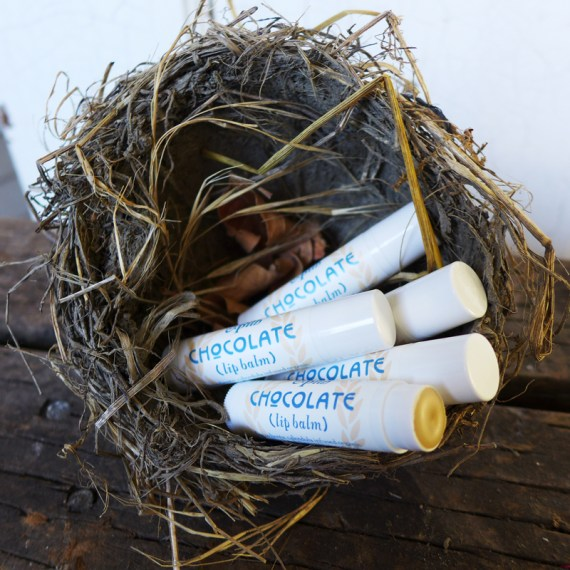 Sugar and Pith Chocolate Calendula Lip Balm, five tubes of lip balm with labels showing and one cap off set in a bird's nest