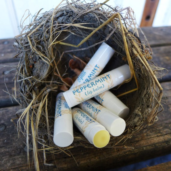 Sugar and Pith peppermint calendula lip balm, six tubes of lip balm in a bird's nest with one label completely readable