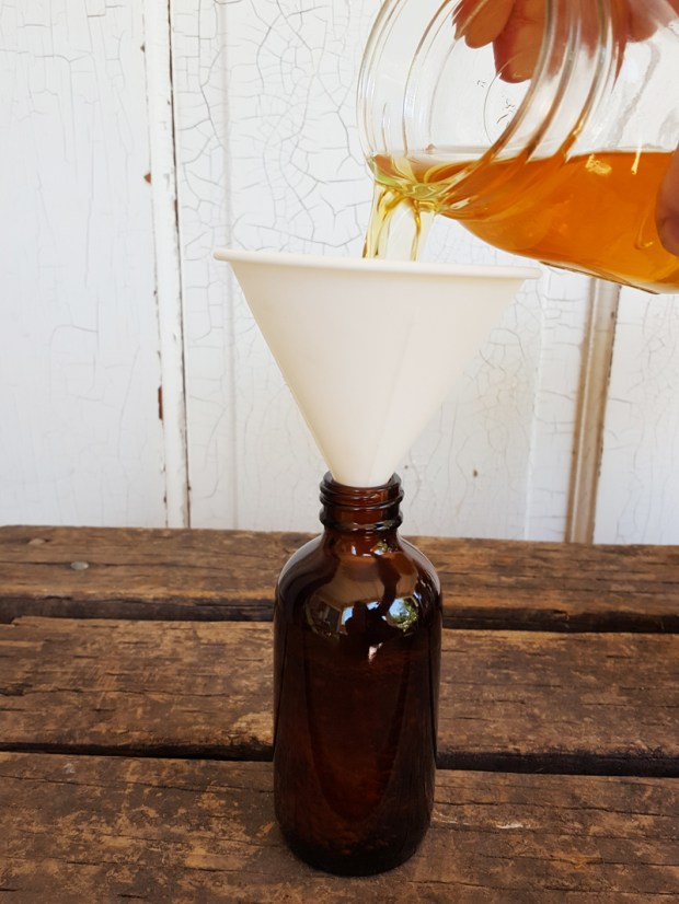 Sugar and Pith, pouring calendula tincture through funnel into an amber round bottle