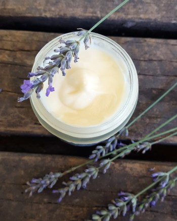 Sugar and Pith, Ultra-Lux Lavender, shot looking down at an open jar of cream with a lavender spike balancing across the top, jar on a rustic wooden surface with some lavender strewn on it too