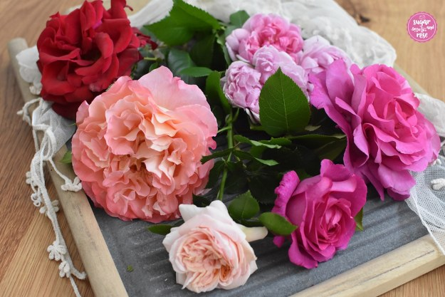 Rosenbluetensammlung.jpg