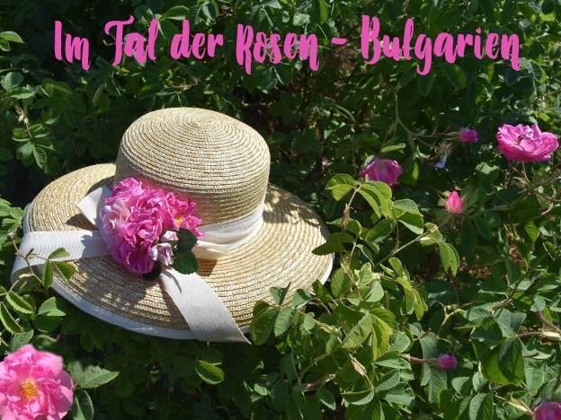 Rosenreise Bulgarien Hut mit Rosen