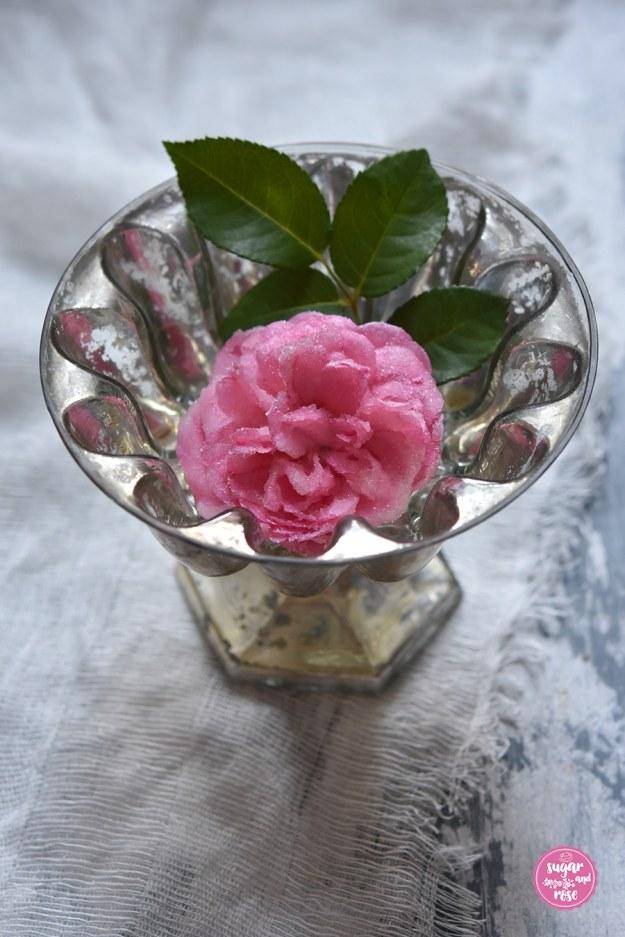 Kandierte-Rose6