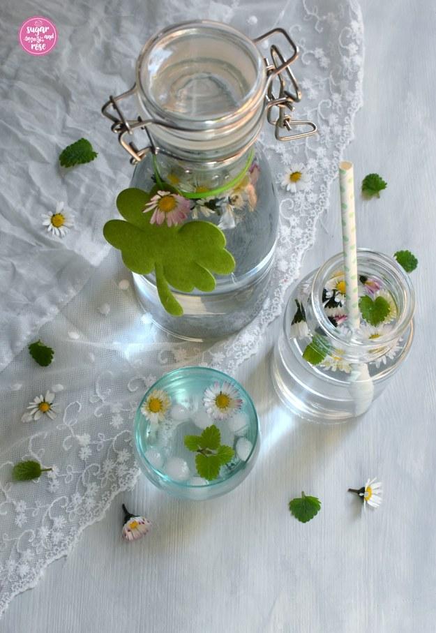 Gänseblümchenwasser in Glas und in Flasche