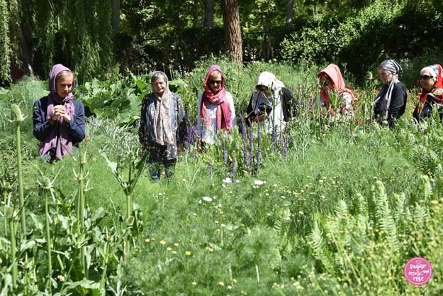 Bagh-e-Golha, Kräutergarten