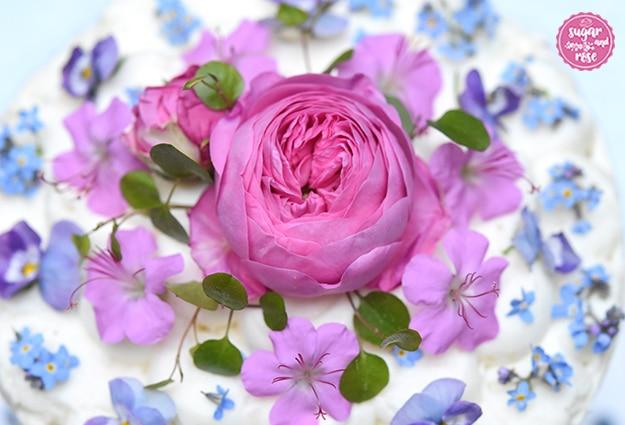 Eine Blüte der Rose Louise Odier, rosa Storchenschnabel und Vergissmeinnicht auf Topfencreme