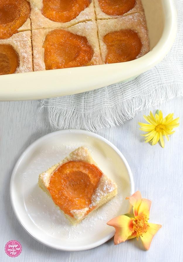 Ein Stück Marillenkuchen auf einem kleinen weißen Metalltellerchen, bestreut mit Staubzucker, dekoriert mit einer orange-gelben Rosenblüte. Im Hintergrund eine Pfanne mit geschnittenem Marillenkuchen.