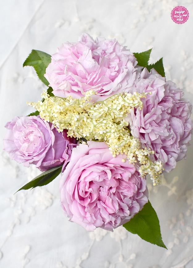 Vier rosa Blüten der Rose Archiduchesse d'Autriche sowie ein Zweig weiße Holunderblüten in einer Vase von oben fotografiert.