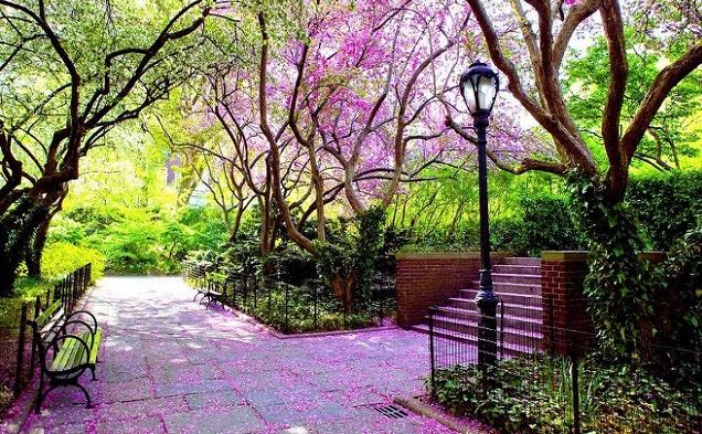 Central-Park-Conservatory-Garden