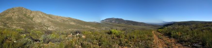 A bad pano up in the fynbos at Blue Hill