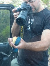 Alan photographing the strange-looking uropygial gland of the half-collared kingfisher.