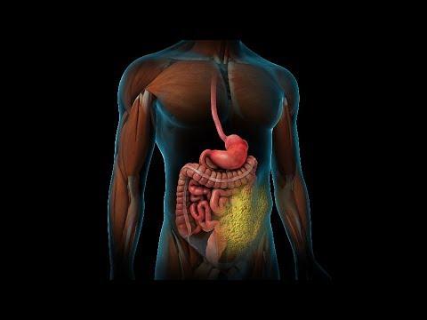 Treatments for Type 2 Diabetes   Nucleus Health
