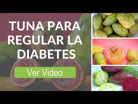 Recetas Faciles Con Tuna Para Regular La Diabetes