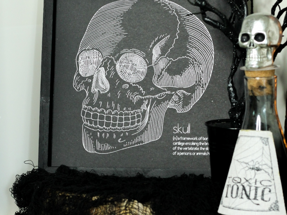Foil Skull Sketch WEB-1