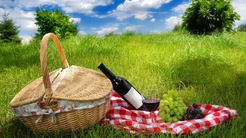 beautiful-picnic-laid-out-on-the-grass