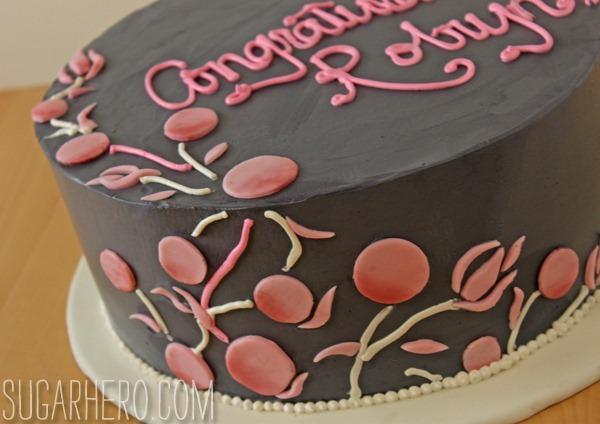 robyn-cake-4