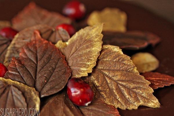 cranberry-chocolate-truffle-cake-3