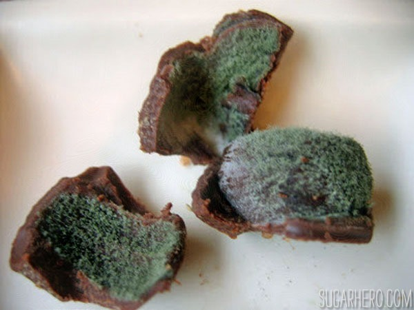 Moldy Chocolate Truffles | From SugarHero.com
