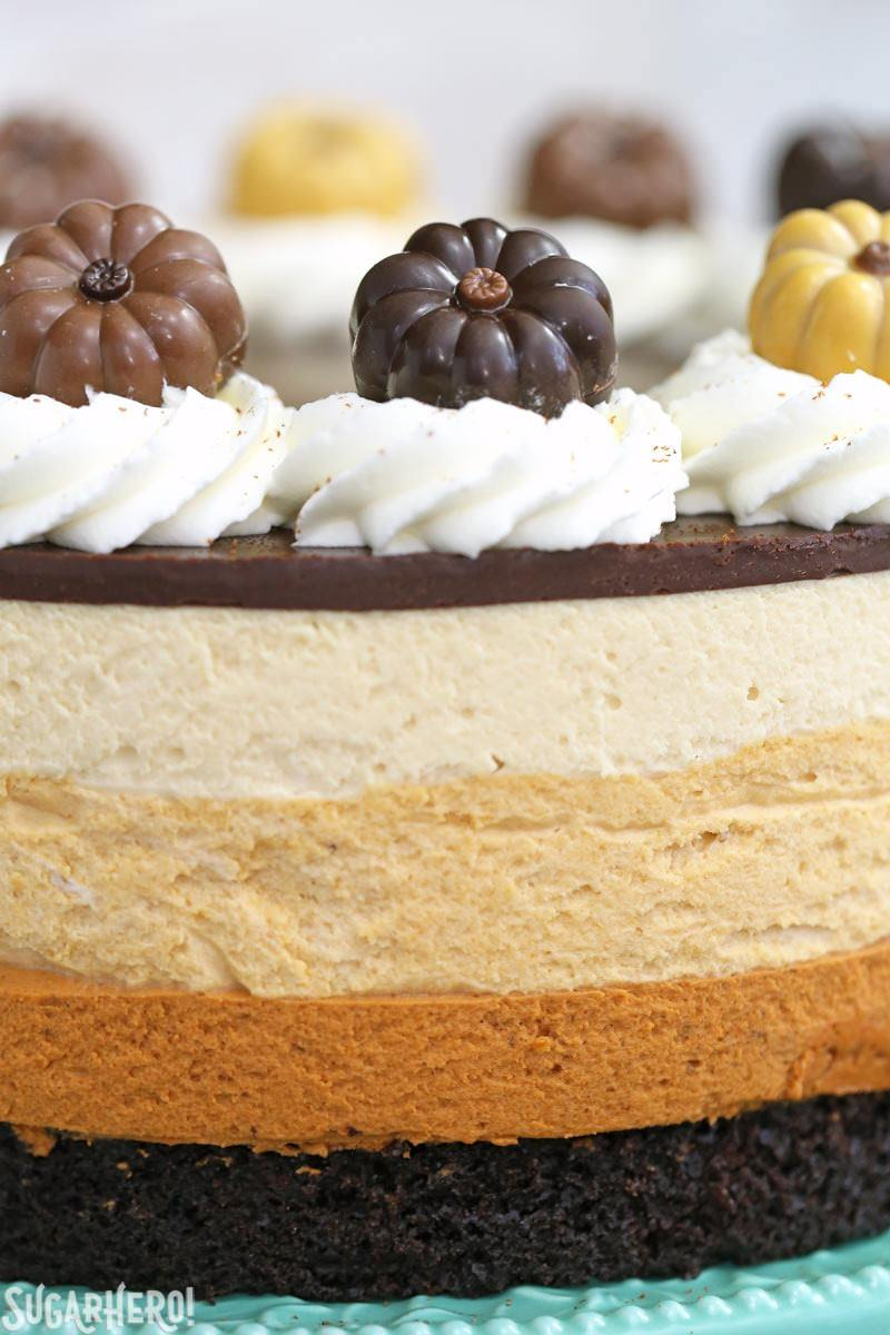 Pumpkin Chocolate Mousse Cake - A close up of the pumpkin toppers, and showing each layer of mousse. | From SugarHero.com