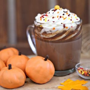 Pumpkin Spice Hot Chocolate | From SugarHero.com
