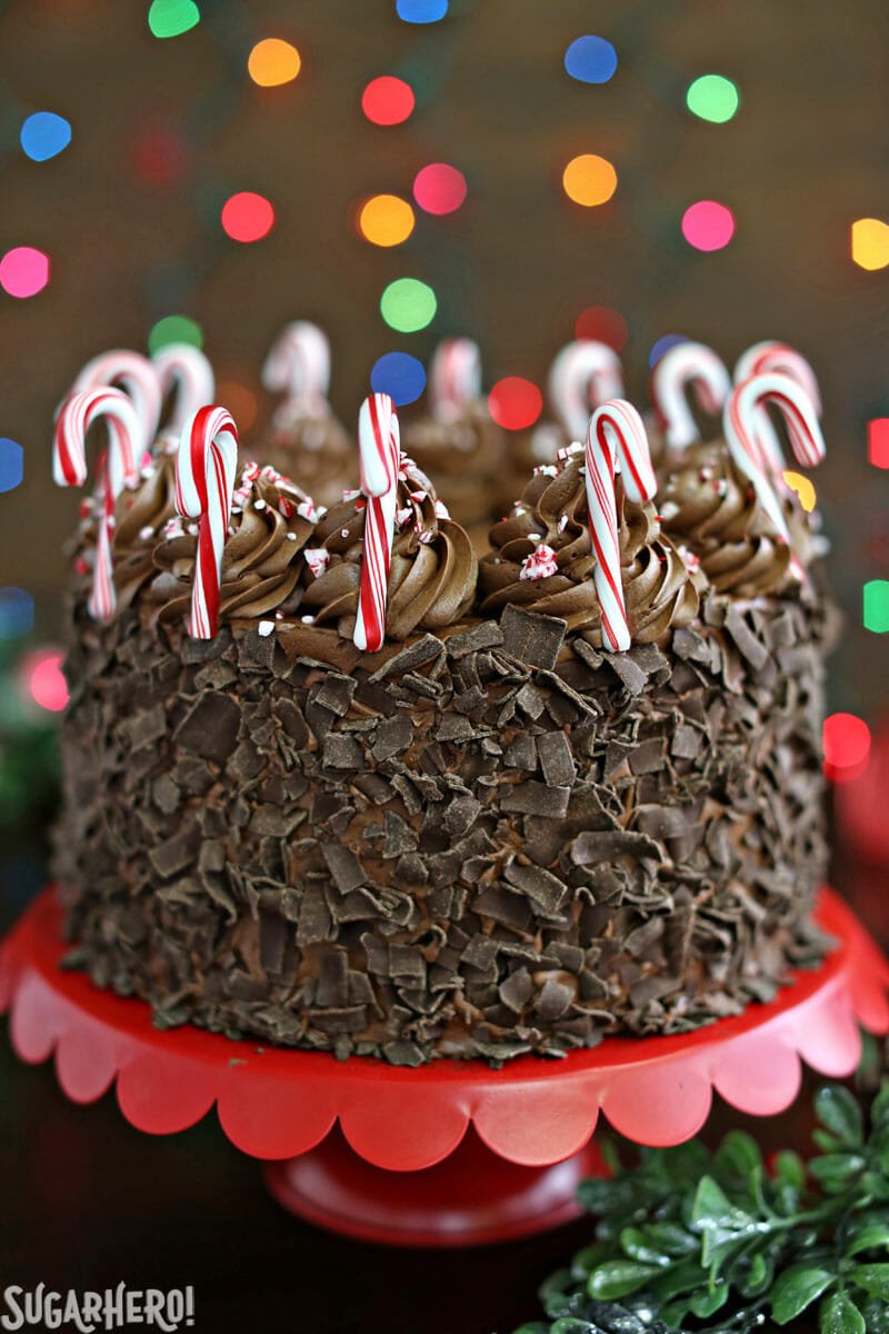 Chocolate Candy Cane Cake – chocolate cake, covered with chocolate curls and decorated with miniature candy canes around the top | From SugarHero.com