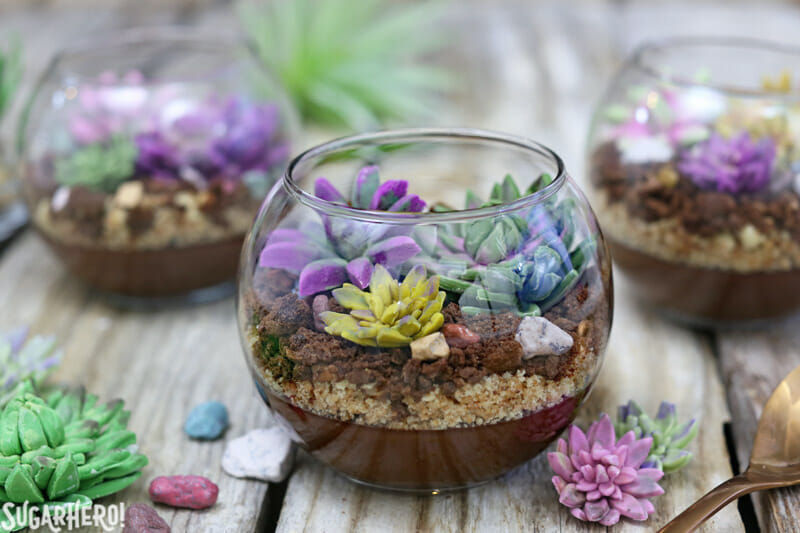 Edible Terrariums with Chocolate Pudding and Fondant Succulents | From SugarHero.com