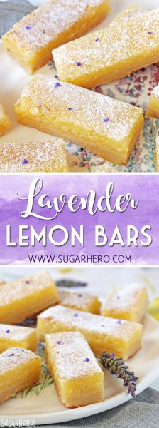 Lavender Lemon Bars | From SugarHero.com