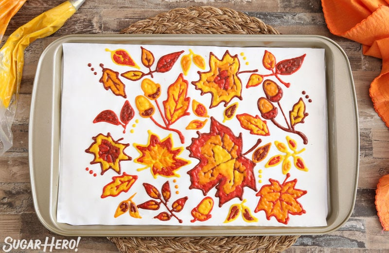 Patterned Pumpkin Roll - A full shot of the designs piped onto parchment paper. | From SugarHero.com