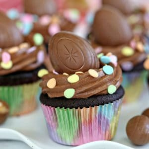 Double Chocolate Easter Cupcakes