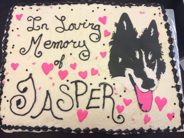 border collie cake pink white black jasper royal icing