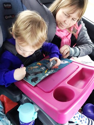Family Road Trip Essentials (1)