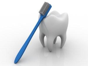Dentist Ellijay GA
