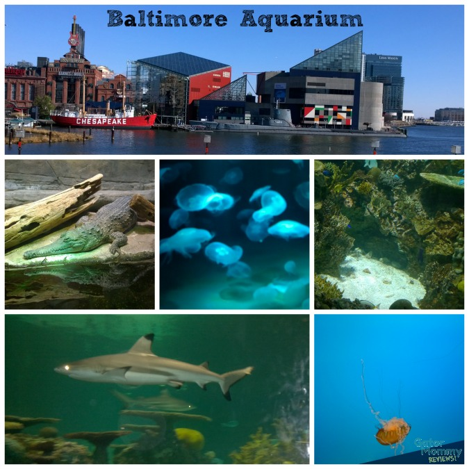 Baltimore Aquarium