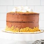 Chocolate cake layers with a graham cracker, marshmallow filling, then finished with a chocolate buttercream frosting, and topped with toasted marshmallows! This S'mores Cake is fun, easy, and delicious!
