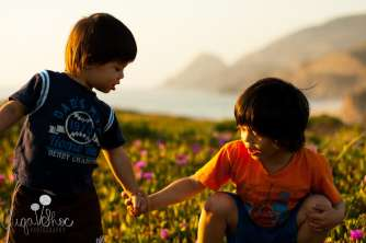 SugaShoc_Photography_Children_Photographer_Bucks County_Doylestown_PA_child_half_moon_bay_brothers_let_me_help_you