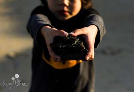 SugaShoc_Photography_Children_Photographer_Bucks County_Doylestown_PA_child_santa_cruz_beach_child_look_at_my_rocks