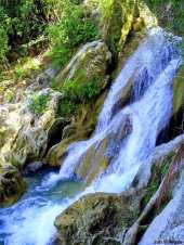 bugnawan-falls-ginatilan-cebu3
